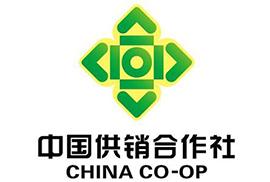 中国供销集团
